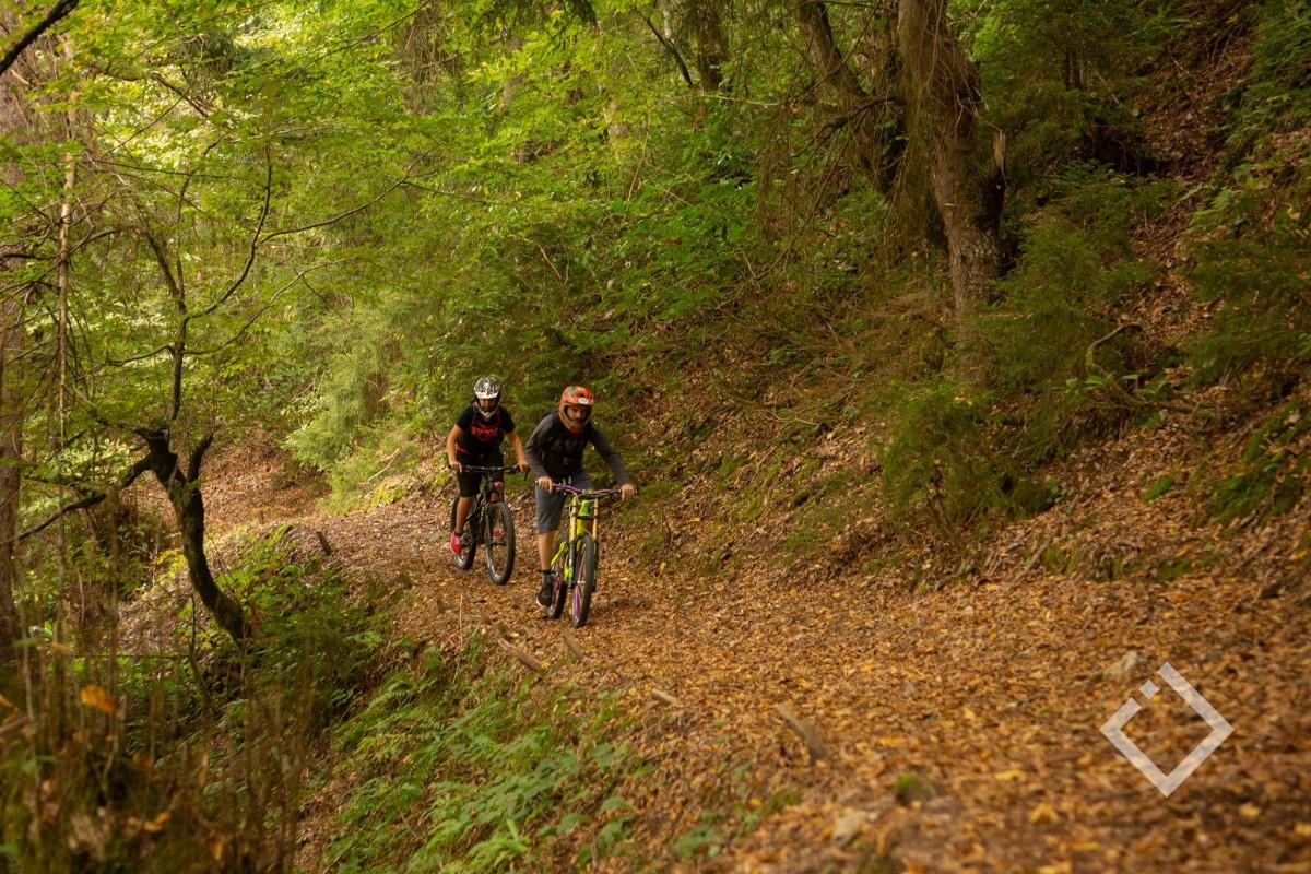 მთიან აჭარაში ევროპული დონის სამთო ველობილიკი მოეწყობა